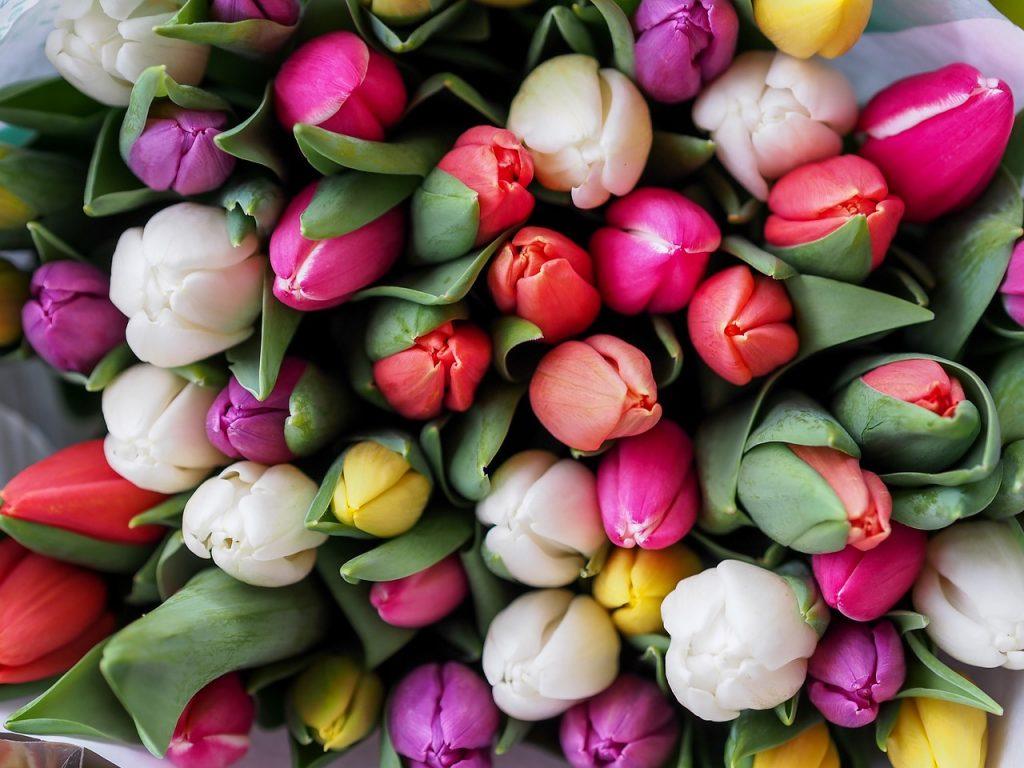 recevoir-des-fleurs